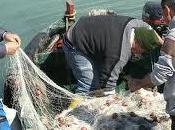 Siracusa, unica città siciliana progetto europeo pesca ecocompatibile