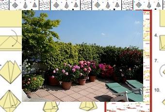 Siepi per terrazzi - Paperblog