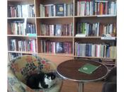 libri gatti. Belgrado