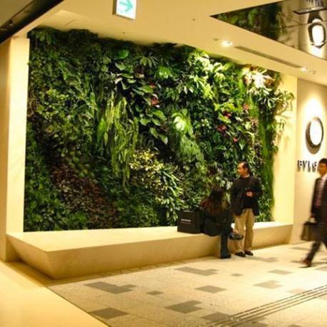 Pareti Verdi Foto: Pareti verde verticale per interni realizzati in lichene ufficiostile.