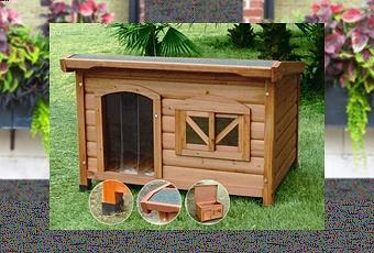 Come costruire una cuccia per cani paperblog for Costruire cuccia per cani coibentata