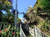 Filbert Steps, scala bella Francisco