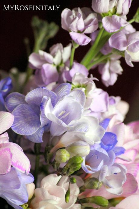 Delicati fiori di primavera paperblog for Fiori di primavera