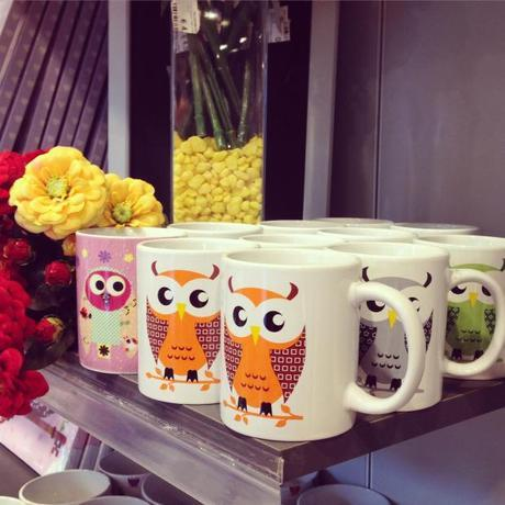 Co.import - it's hoot time!