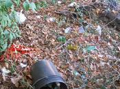mese delle rose rifiuti terremo casa