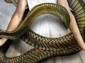 strofa serpente