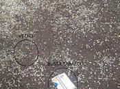 foto denunciare degrado Parco Monte Grano. Area bambini pericolosa tenuta malissimo quello potrebbe essere Central Park Quadraro