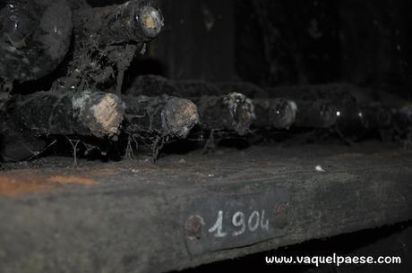 Le bottiglie di vino più antiche alla cantina Marsetti sono datate 1904!