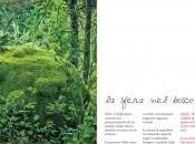 sfera bosco