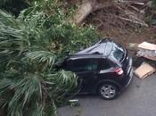 Napoli, vento distruttore: crollano alberi impalcature, treni bloccati