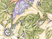 Schema fatina della passiflora
