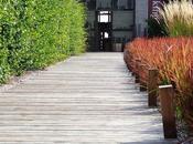 Impariamo progettare giardino cost!