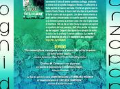 CHELSEA CAMERON TORNATA! fuga dolce, secondo attesissimo romanzo della serie Favorite Mistake ebook 17/3 libreria 31/3!