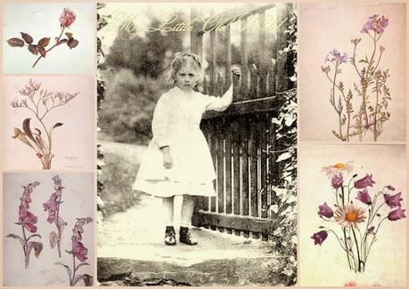 Beatrix Potter's early gardening with pencil and paintbrush.