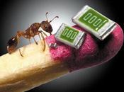 NANOTECNOLOGIA nuova minaccia cibo