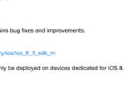 Apple rilascia l'iOS Beta pubblico beta sviluppatori