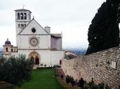 foto della settimana: ricordi Assisi domenica delle palme