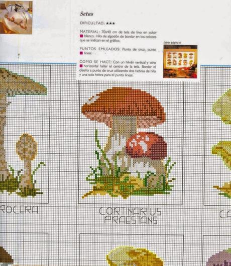 Schemi Elettrici Grande Punto : Grande raccolta di schemi a punto croce tema funghi
