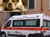 PADOVA Arriva prima ambulanza animali