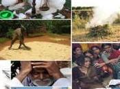 AGRICOLTORI CONTRO MULTINAZIONALI storie resistenza contadina