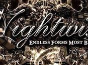 Nightwish Endless Forms Most Beautiful Recensione