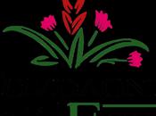 Ecobeauty Compagnia delle Erbe Crema corpo l'Artiglio, viso Rosa Mosqueta, Sapone baobab, Lumakina