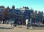 Perchè Amsterdam Venezia nord