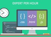 Perché richiedere consulenza Developer esperto HTML,