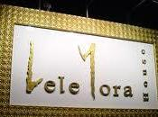 Lele Mora discoteca Garda