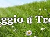 maggio Treviso