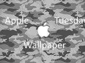 Magic Tuesday Wallpaper sfondi iPhone iPad!
