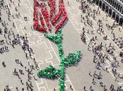 aprile Festa Bocolo Venezia