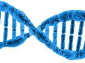 L'esperimento shock divide scienziati