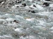 PANTA vita (nuova) acqua