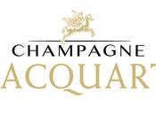 """Champagne Jacquart Rosè: Nuit Rosè"""" Venezia"""