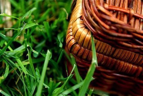 Wicker Picnic Basket Grass 6-1-09 1 by stevendepolo, on Flickr