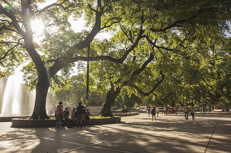 '5pm Light', Argentina, Mendoza, Plaza I by WanderingtheWorld (www.ChrisFord.com), on Flickr