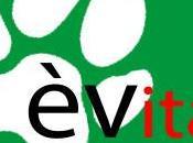 ÈVita, nuovo progetto Collezione Cuccioli Care Italia contro vivisezione