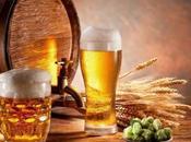 "Arriva ""BirTA"": prima birra artigianale alla mela annurca"