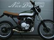 XL600 Nico Dragoni