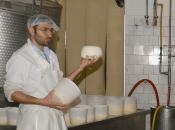 Expo 2015: Todi l'unico formaggio umbro