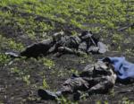 Ucraina. Mina uccide soldati Kiev pressi Lugansk