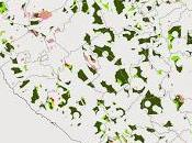 spiegazione potrebbe essere forse, come segnalano alcuni articoli, fatto terreni concimati azoto possono portare maggiore sopravvivenza vettori.
