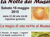 """magia notte Museo"""" Museo fossili Fidenza"""
