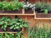 Orti sospesi: benefici orto-giardino balcone