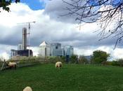 Londra: Mudchute Farm, fattoria nella città