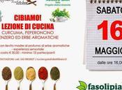 Lezione cucina: curcuma, peperoncino, zenzero erbe aromatiche presso Fasoli Piante