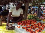 Olio palma Africa