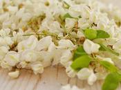 frittelle fiori d'acacia