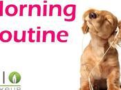 Morning Routine skin care bio!